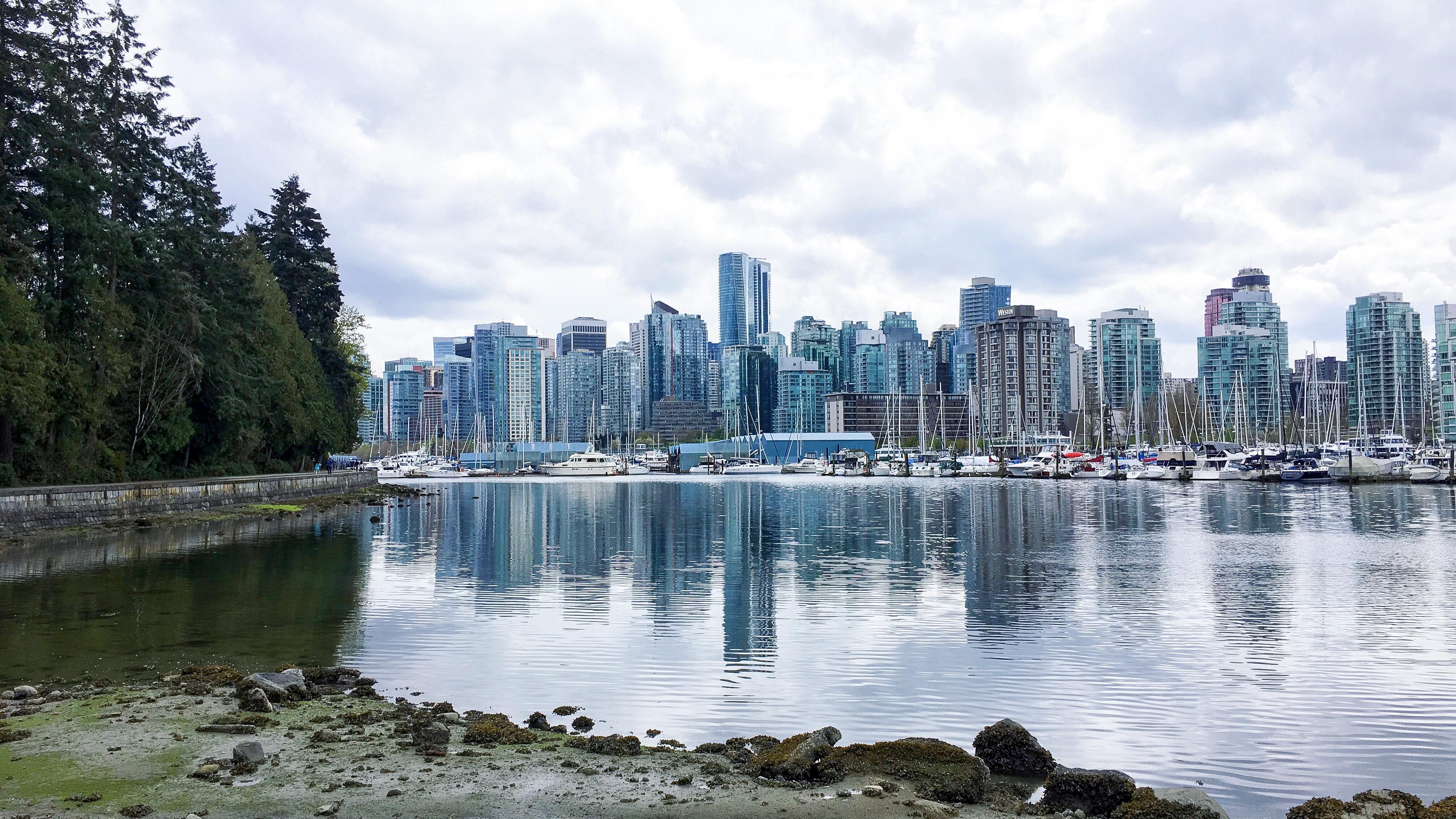 Constats d'une première année à Vancouver | Sparks and Bloom
